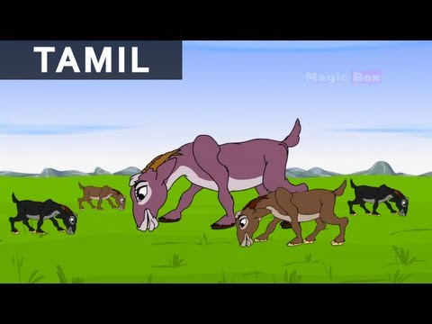 Jataka Tales in Tamil - The Clever She Goat - Kids Animation / Cartoon Stories