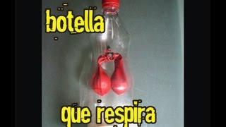 getlinkyoutube.com-EXPERIMENTO APARATO RESPIRATORIO - SISTEMA RESPIRATORIO experiment diaphragm