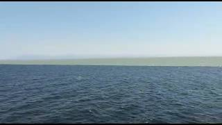 2 sea's meet but water doesn't mix-up !! Wondor 😮