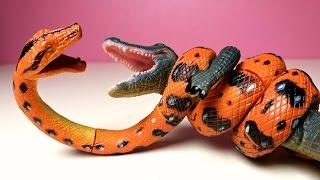 getlinkyoutube.com-3D PUZZLES TOYS ASSEMBLING REPTILES. Boa vs Crocodile, Frilled Lizard, Tortoise, Gecko
