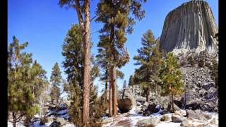 getlinkyoutube.com-The Devil's Tower Is A Megalithic Ancient Tree Immortalized In Stone.