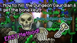 getlinkyoutube.com-How to: Kill Dungeon Guardian - Bone key & Skeletron pet (Easy Method) Terraria Console *PATCHED*