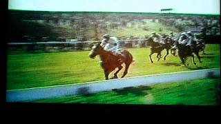 DSCF3435 (2).AVI- A true Champion view on youtube.com tube online.