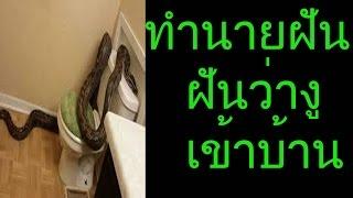 getlinkyoutube.com-ฝันว่างูเข้าบ้าน (พร้อมทำนายเลขเด็ด)