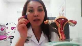 getlinkyoutube.com-Анатомия женских половых органов