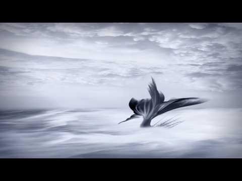 Tides (Original Composition)
