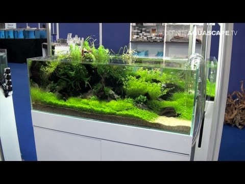 Aquascaping - Aquarium Ideas from Aquatics Live 2012, part 1