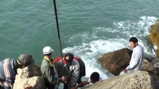 getlinkyoutube.com-poisson de 50 kg a kenitra