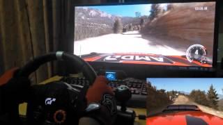 Dirt Rally (Logitech Driving Force GT)