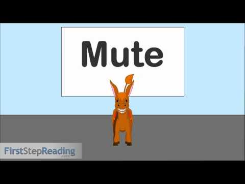 Long Vowel U Vowel Consonant Vowel, Beginning Readers Grammar Phonics Lesson
