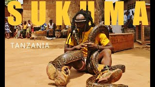 getlinkyoutube.com-Sukuma African Dance (Tanzania pythons)