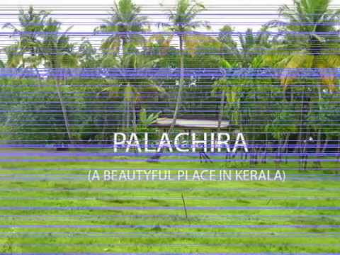 Palachira....Beautiful n fabulous place In Kerala....