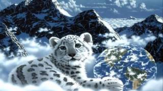 getlinkyoutube.com-Tiger in the Rain * Michael Franks