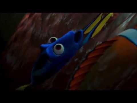 5. Finding Nemo