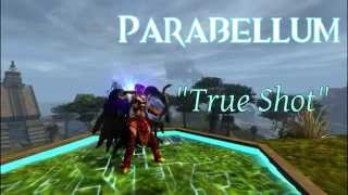 "getlinkyoutube.com-Gw2 - Parabellum - ""True Shot"" Dragonhunter/Guardian Roaming WvW"