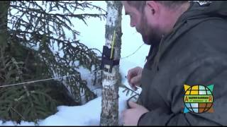 Как защитить периметр стоянки в лесу