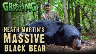 getlinkyoutube.com-Bow Hunting BIG Bears and Whitetails: In Range and DOWN! (#256) @GrowingDeer.tv