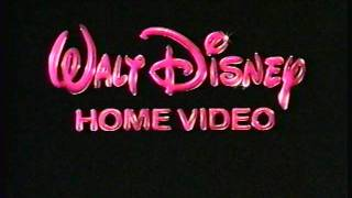 Surprising Opening To Winnie The Pooh And Tigger Too Vhs Youtube Easy Diy Christmas Decorations Tissureus