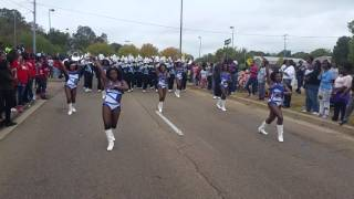 2015 JSU J-settes Homecoming Parade (Rub 2)