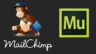 getlinkyoutube.com-Mailchimp Newsletter Widget For Adobe Muse