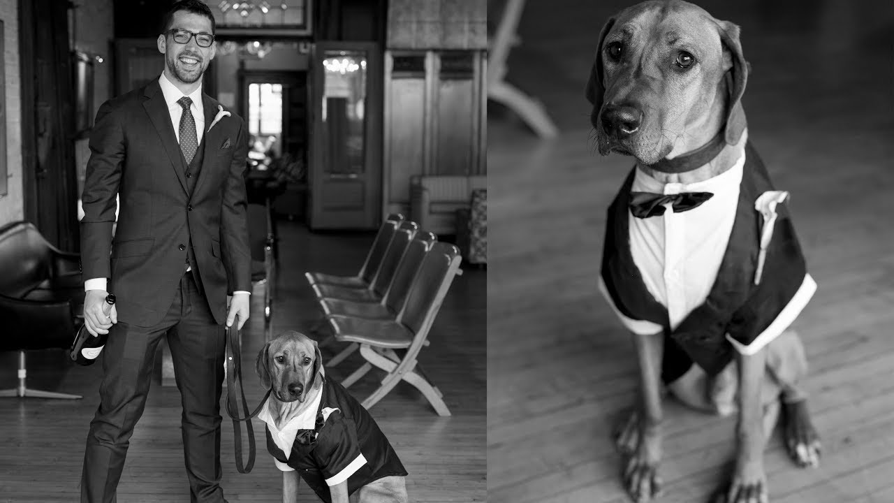 First Comes Dog, Then Comes Marriage Video Thumbnail