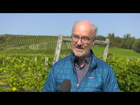 Une importante distinction pour le Vignoble Domaine L'Ange-Gardien