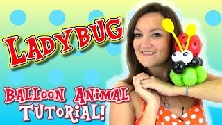 getlinkyoutube.com-Easy LadyBug Balloon Animal tutorial with Holly the Twister Sister!
