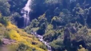 getlinkyoutube.com-5 Bigfoot Sightings Caught On Tape (2016)