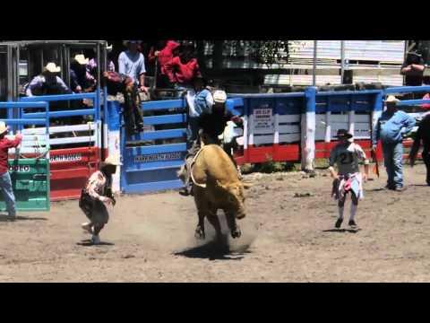 Warkworth Rodeo 2013