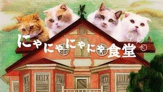 getlinkyoutube.com-au WALLET「にゃにゃにゃにゃ食堂」 史上初!ネコ語ドラマ(ヒューにゃんドラマ)