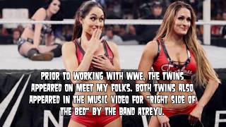 Five Things You Didn't Know About Nikki Bella