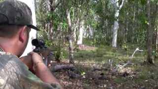 getlinkyoutube.com-Water Buffalo hunt - Carmor Plains, Australia - 2012