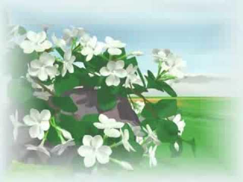 """""""malayalam animation""""  tarattu pattu kunjappi 2012"""