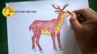 Vẽ con Hươu/How to Draw Deer