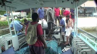 getlinkyoutube.com-FAD Deployment, These structures  fishing in Port Vila Vanuatu