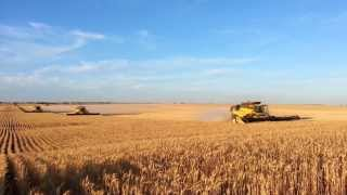 getlinkyoutube.com-Gleeson Harvest Australia 2013. New Holland CR9090's