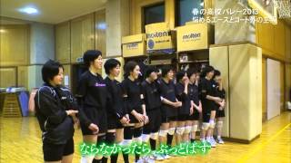 getlinkyoutube.com-春高バレー2013密着365日!名門下北沢成徳バレー部