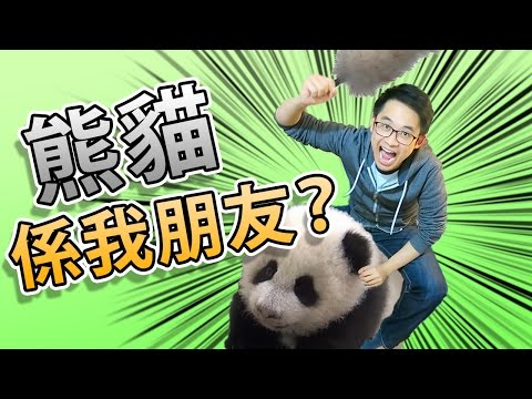 今次我同我隻熊貓一齊冒險? - 夢幻誅仙