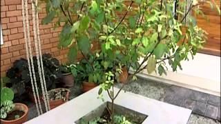 getlinkyoutube.com-Shankaram Manorama Veedu 01