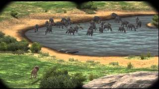 getlinkyoutube.com-Game end - Afrika / Hakuna Matata