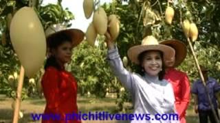 getlinkyoutube.com-จังหวัดพิจิตรอำเภอสากเหล็ก ส่งเสริมเกษตรกรผู้ปลูกมะม่วง