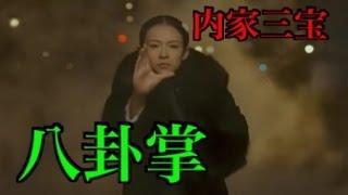 getlinkyoutube.com-【中国武術・カンフー基本講座】八卦掌とはどんな拳法なのか!