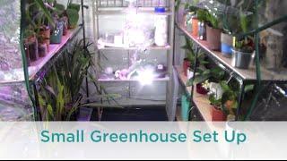 getlinkyoutube.com-Small Orchid Greenhouse Set Up