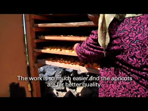 Drying apricots with solar technology in Tajikistan - Christian Aid