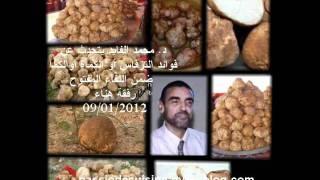getlinkyoutube.com-د  محمد الفايد يتحدث عن فوائد الترفاس أو الكمأة أوالكمأ ضمن اللق