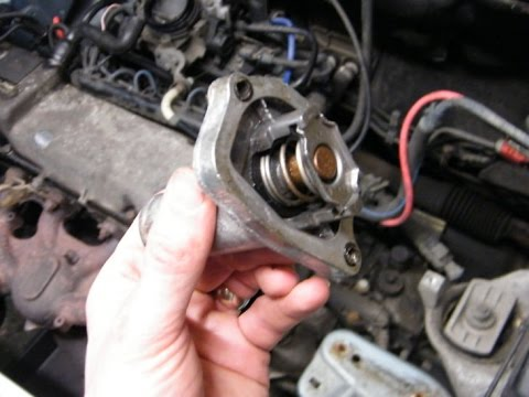 Fiat Punto Thermostat Change