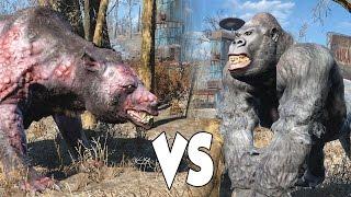 getlinkyoutube.com-FALLOUT 4 BATTLE #2 - 30 Yao Guai vs 70 Gorillas