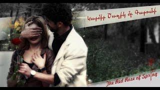 getlinkyoutube.com-The Red Rose of Spring