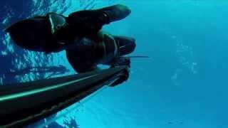 Подводная охота, дайвинг, фридайвинг, путешествия, прикдючения под водойй