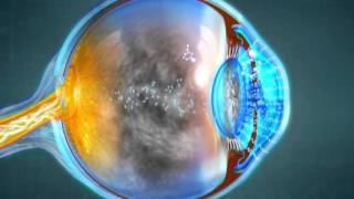 细胞活力滴眼液-中文